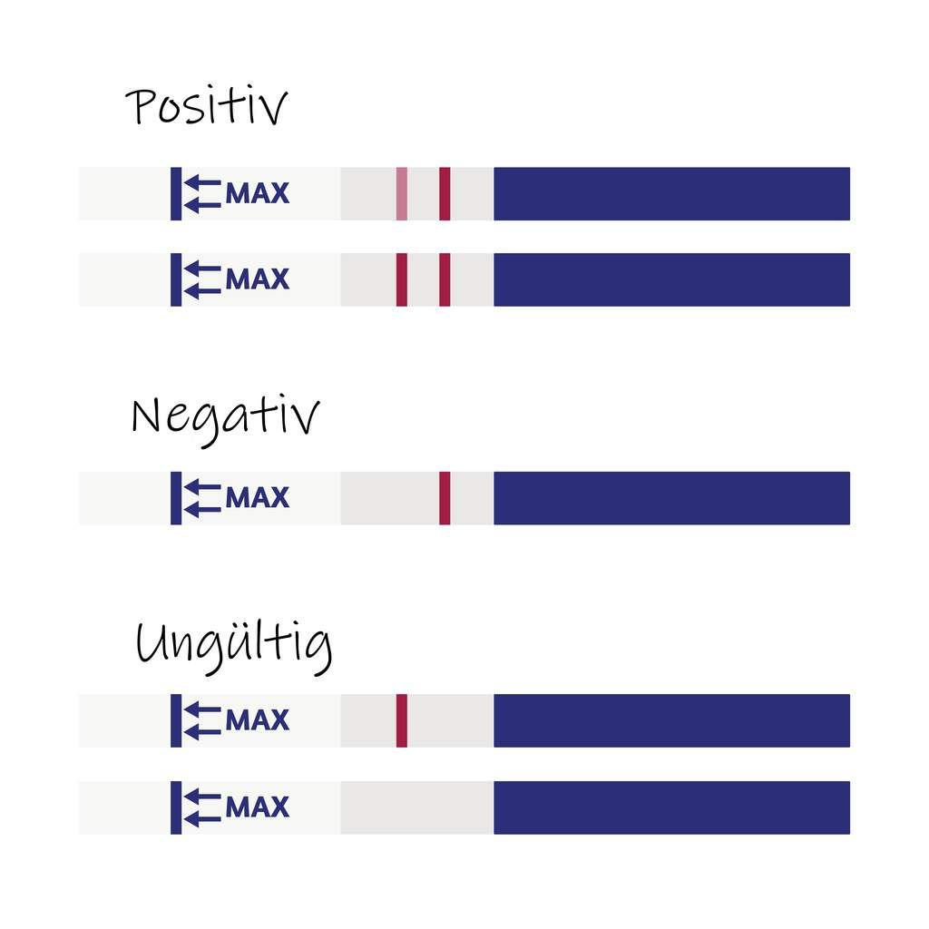 Querstreifen schwangerschaftstest Linea nigra: